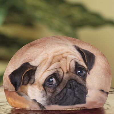 Pug Paperweight